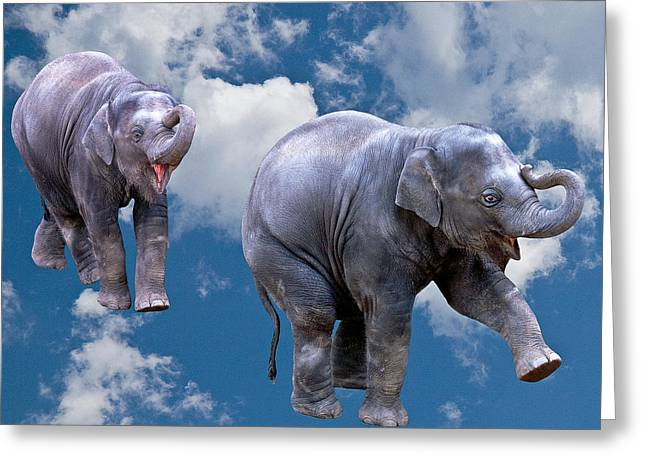 Dancing Elephants Greeting Card by Jean Noren
