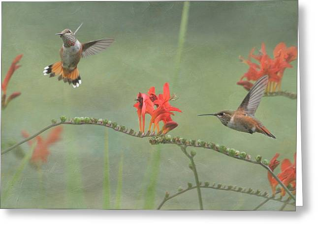 Dancing In The Flowers Greeting Card by Angie Vogel