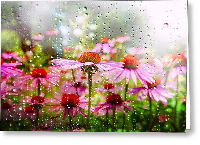 Dancing In The Rain Greeting Card by Mary Timman