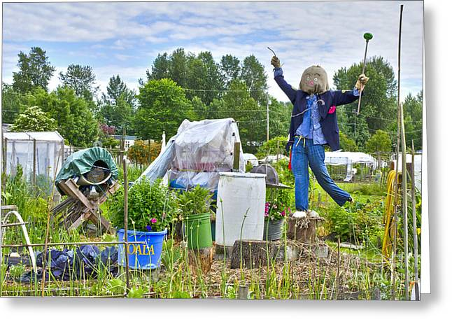 Greeting Card featuring the photograph Dancing Scarecrow In The Garden by Maria Janicki