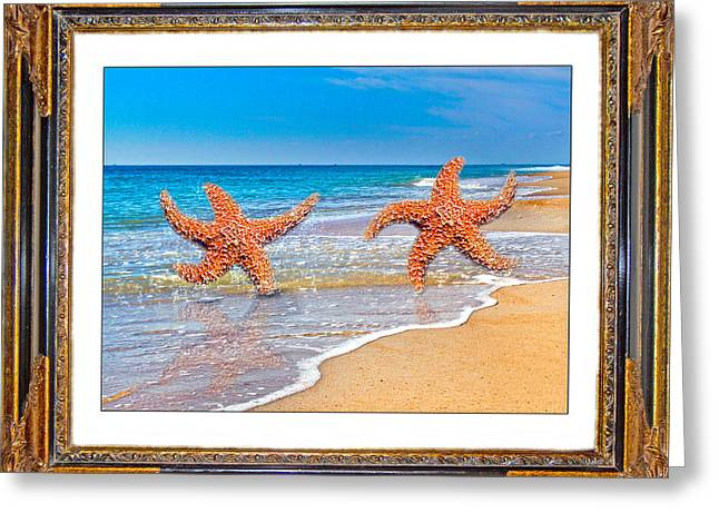Dancing To The Beat Of The Sea Greeting Card by Betsy Knapp