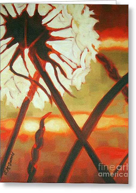 Dandelion At Last Light Greeting Card by Janet McDonald