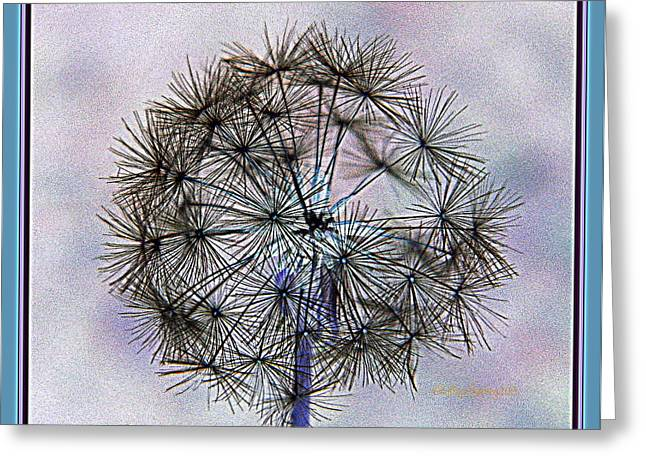 Dandelion Blue And Purple Greeting Card by Kathy Barney