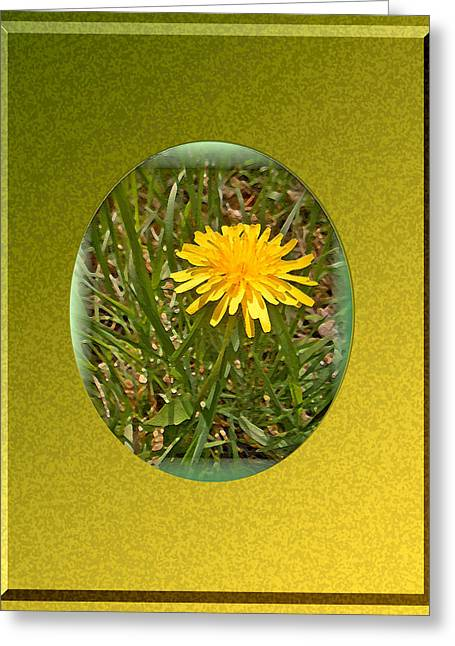 Dandelion Daisy Greeting Card by Patricia Keller