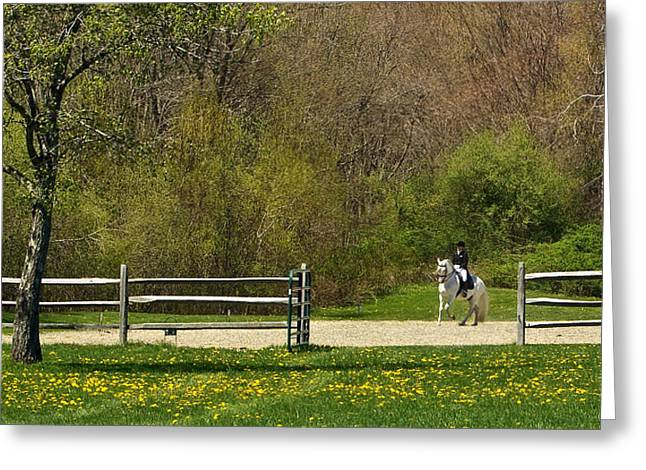 Greeting Card featuring the photograph Dandelion Dressage by Joan Davis
