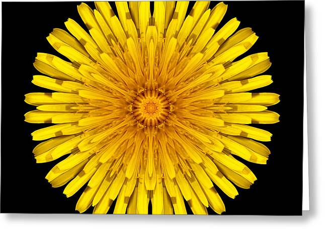 Greeting Card featuring the photograph Dandelion Flower Mandala by David J Bookbinder