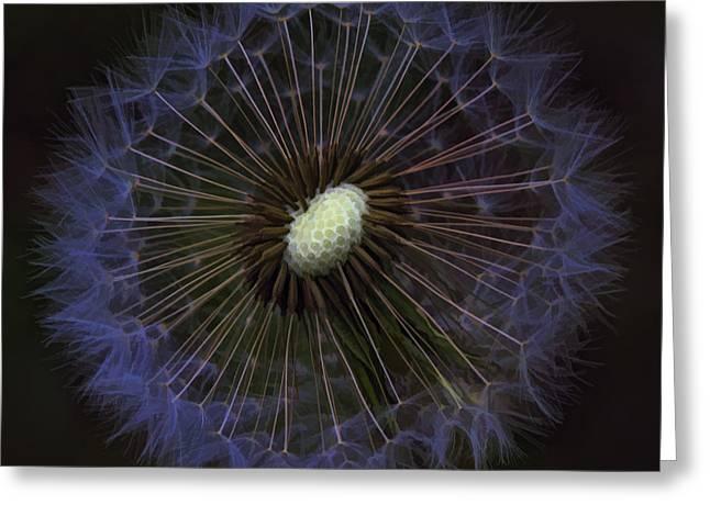 Dandelion Nebula Greeting Card by Kathy Clark