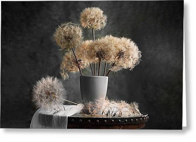 Dandelion Seed Pod Greeting Card by Lydia Jacobs