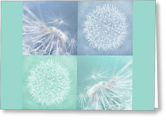 Dandelions Blue Teal Four Greeting Card