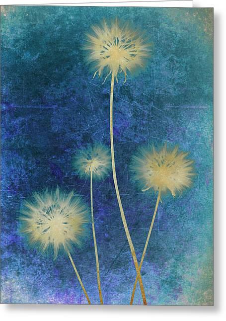 Dandelions Greeting Card by Nicole Neuefeind