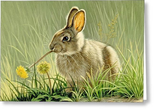 Dandi-nibbler Greeting Card by Paul Krapf