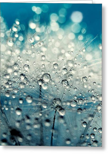 Dandy Blue And Drops Greeting Card