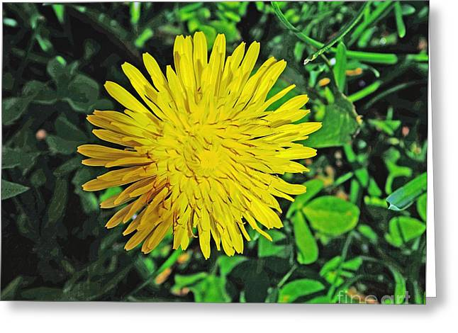 Dandy Lion Greeting Card by Luther Fine Art