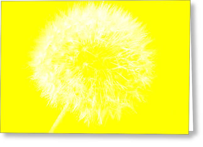 Greeting Card featuring the digital art Dandylion Yellow by Clayton Bruster
