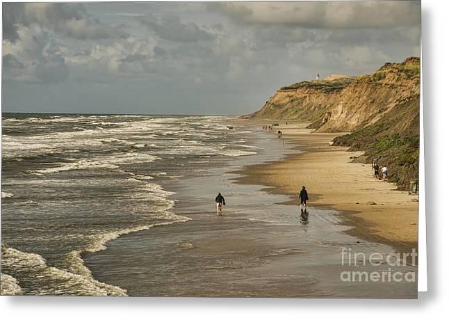 Danish Beach In North Jutland Greeting Card