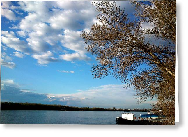 Danube Greeting Card by Lucy D