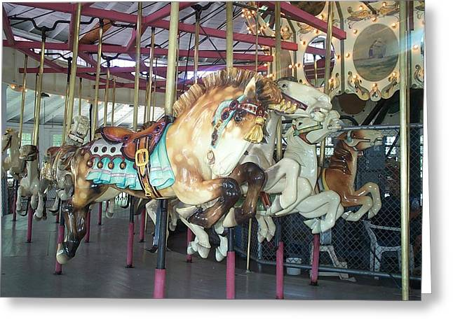 Greeting Card featuring the photograph Dapled Pony by Barbara McDevitt