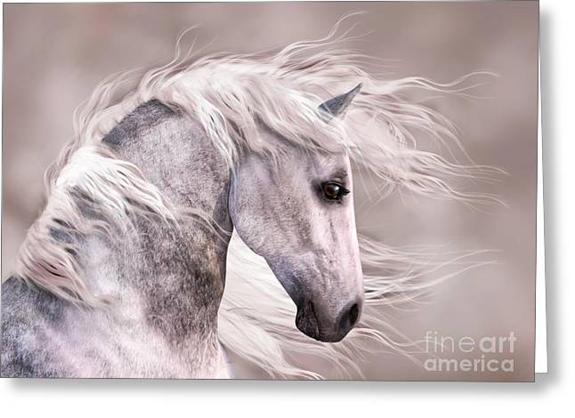 Dappled Grey Horse Head Profile Greeting Card