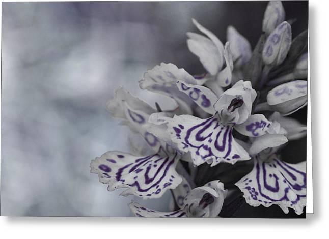 Dark Angel Of Flowers Greeting Card