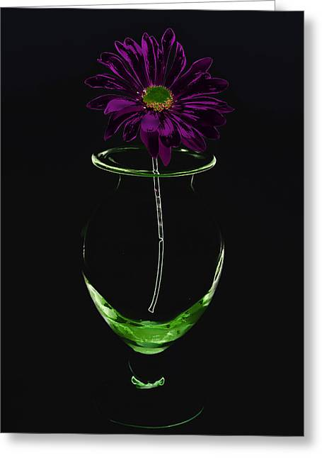 Dark Bloom Greeting Card by Swank Photography