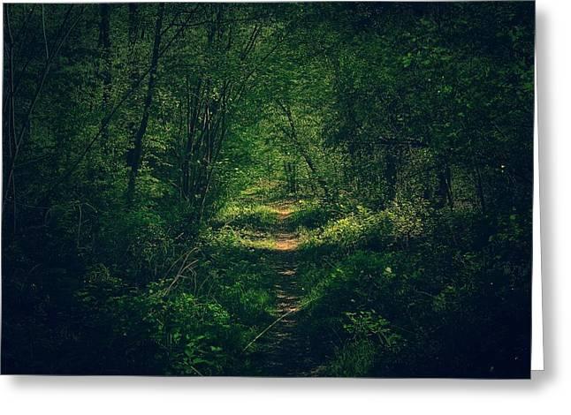 Dark Forest Greeting Card by Daniel Precht