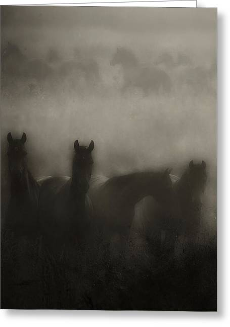 Dark Horse Dreams Greeting Card by Ron  McGinnis