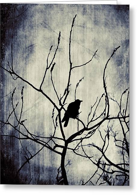 Crow In Dark Lights Greeting Card