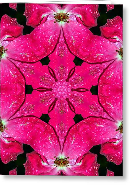 Dark Pink Splendor Mandala Greeting Card