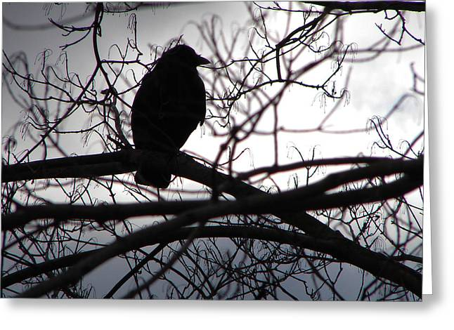 Greeting Card featuring the photograph Dark Sentinel by Brian Stevens