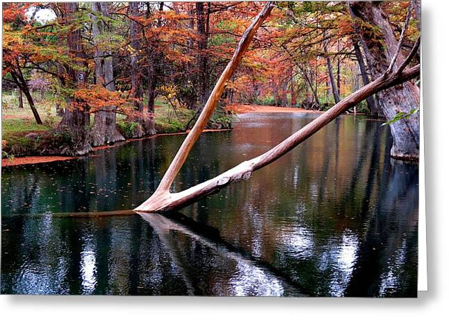 Greeting Card featuring the photograph Dark Waters by David  Norman