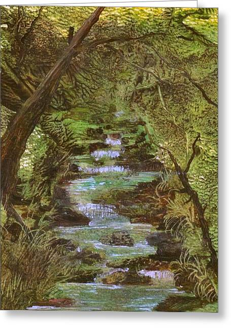Dartmoor River Greeting Card by Carol Rowland
