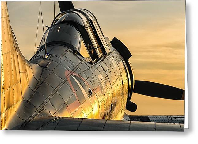 Dauntless At Dusk Greeting Card