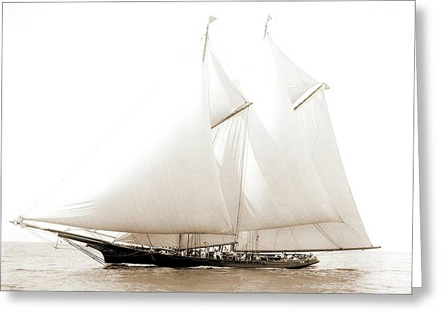Dauntless, Dauntless Schooner, Yachts Greeting Card
