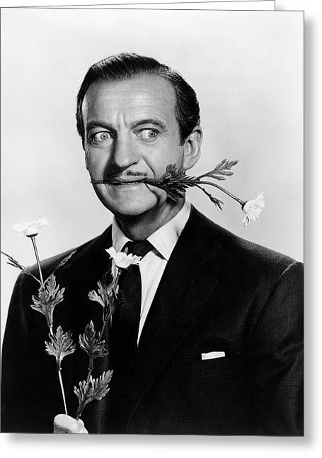 David Niven In Please Don't Eat The Daisies  Greeting Card by Silver Screen