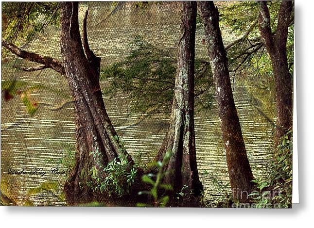 Davids River Greeting Card