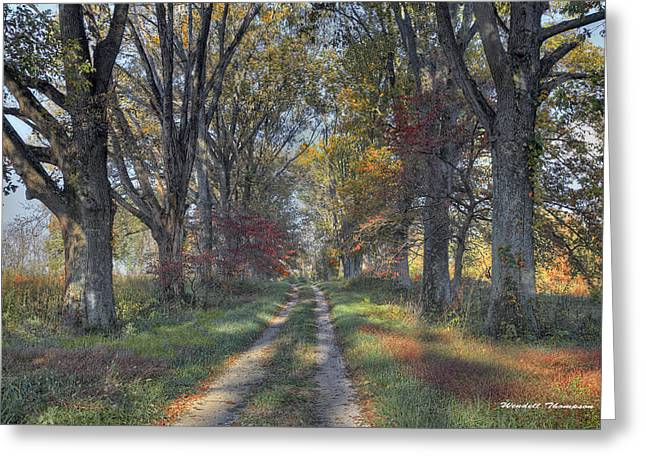 Daviess County Lane Greeting Card by Wendell Thompson