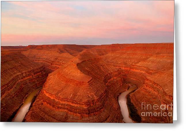 Dawn At Goosenecks Of The San Juan River Greeting Card by Douglas Taylor