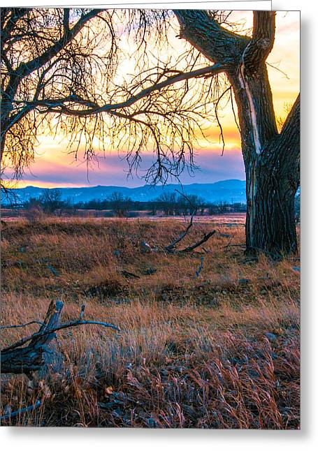 Greeting Card featuring the photograph Setting Sun At Rocky Mountain Arsenal by Tom Potter