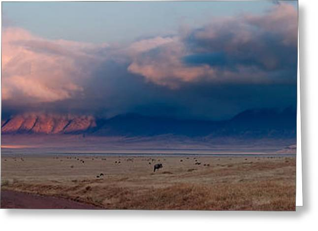 Dawn In Ngorongoro Crater Greeting Card by Adam Romanowicz