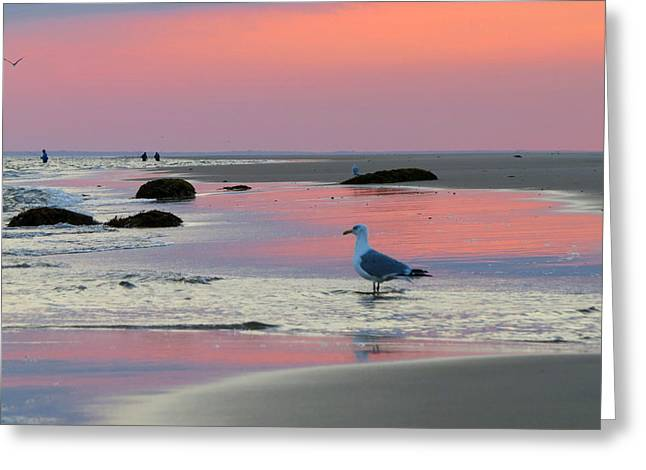 Greeting Card featuring the photograph Dawn In Pink by Dianne Cowen