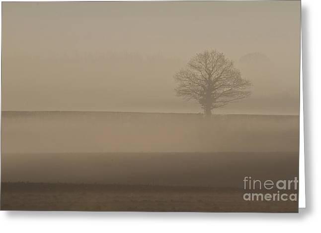 Greeting Card featuring the photograph Dawn Mist  by Gary Bridger