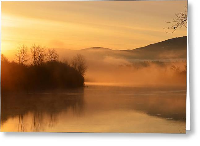 Dawn On The Kootenai River Greeting Card by Annie Pflueger