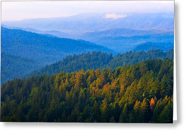 Dawn On The Mist Covered Hills Of Northern California Greeting Card