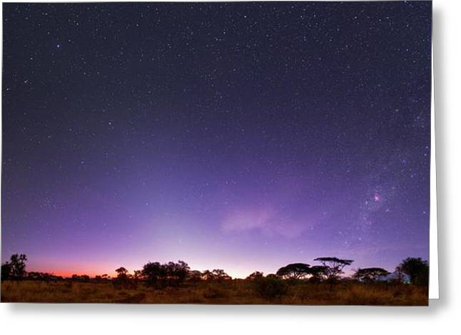 Dawn Over Mount Kilimanjaro Greeting Card by Babak Tafreshi