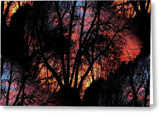 Sunrise - Dawn's Early Light Greeting Card by Luther Fine Art