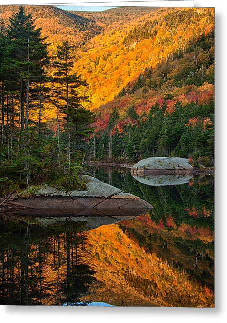 Dawns Foliage Reflection Greeting Card