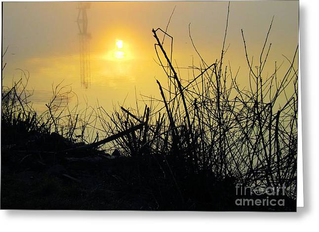 Greeting Card featuring the photograph Daybreak by Robyn King