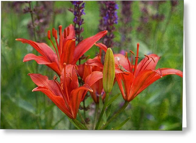 Lilies And Foe Greeting Card