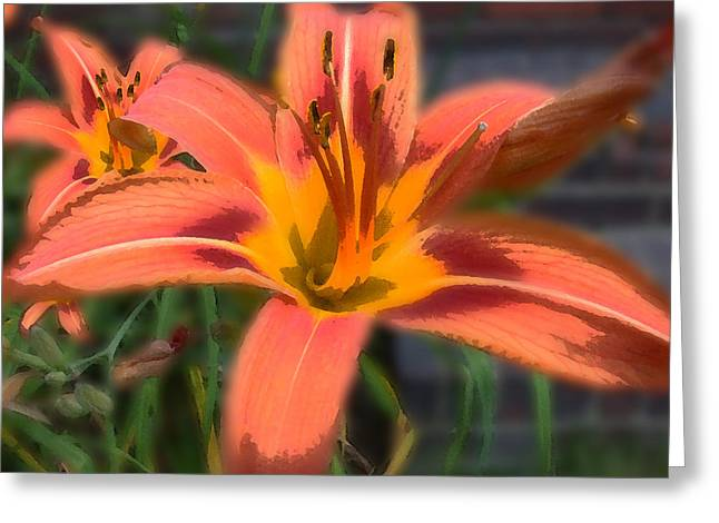 Greeting Card featuring the photograph Day Lilly by David Armstrong