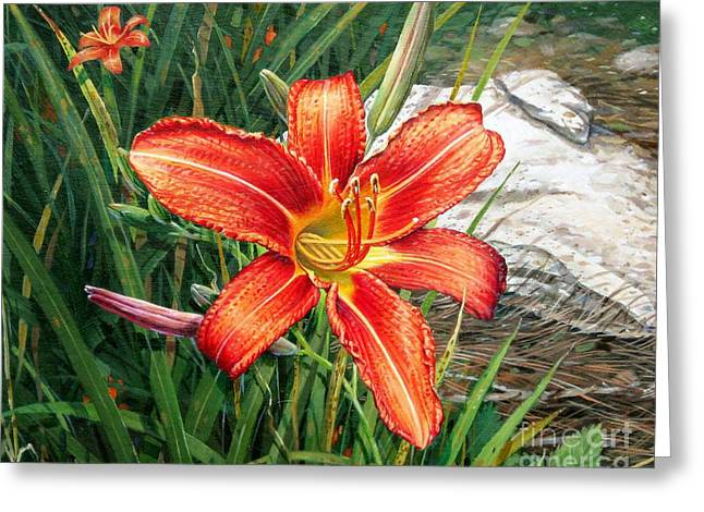 Greeting Card featuring the painting Day Lily by Bob  George
